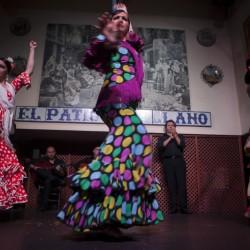 Fotos de nuestras artistas en el espectáculo flamenco de El Patio Sevillano